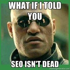 SEO isn't dead meme
